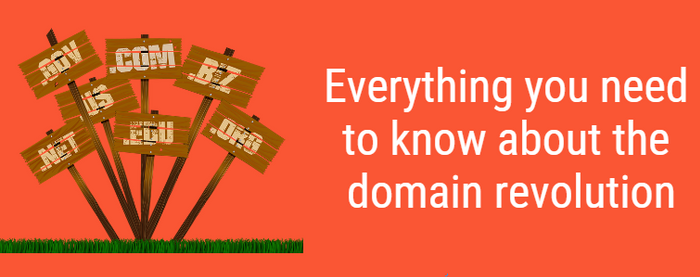 Everything you need to know about the domain revolution