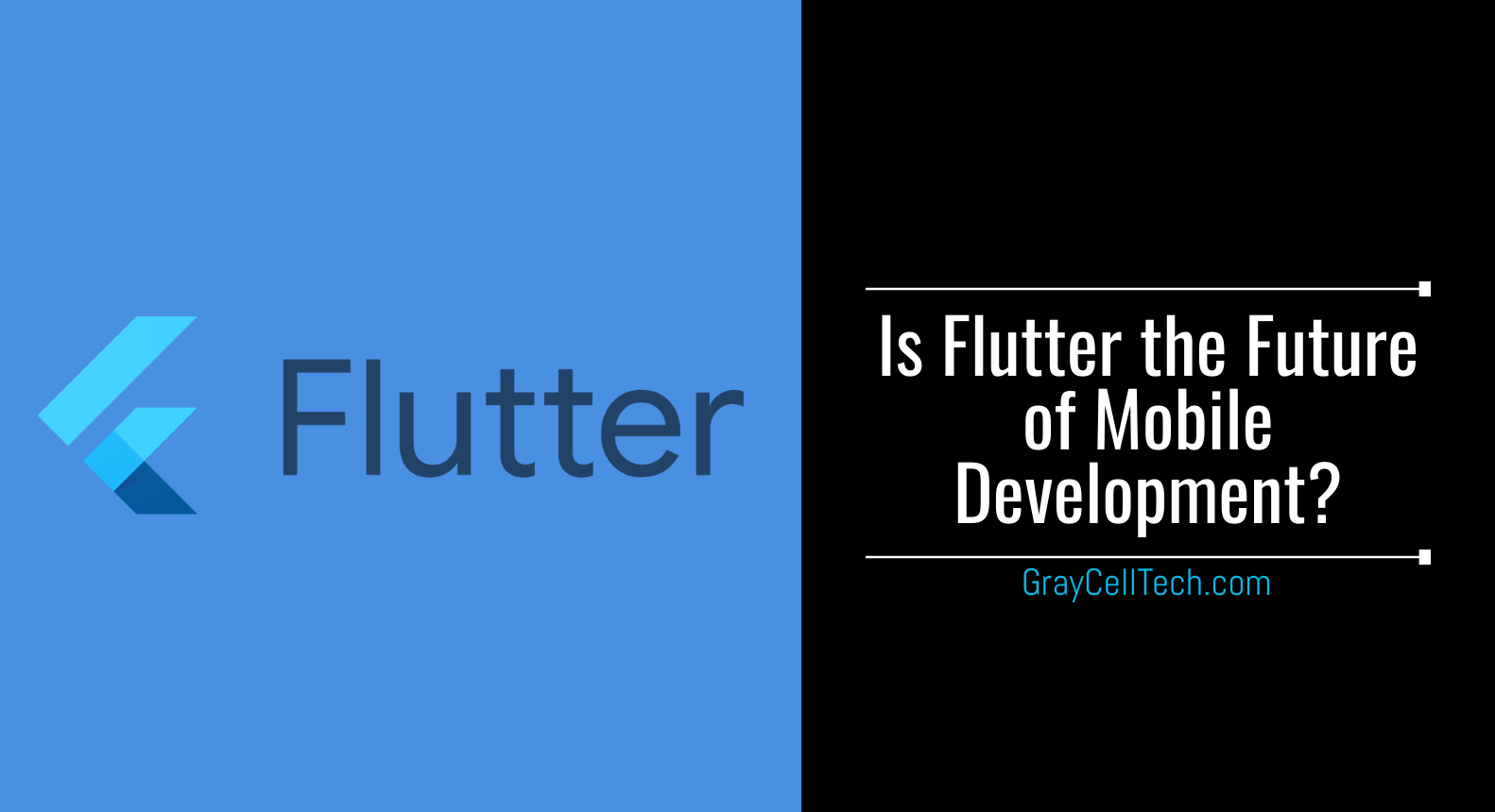 Flutter the Future of Mobile App Development