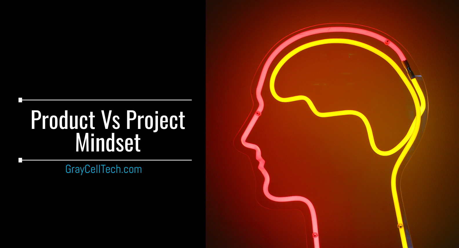 Product Mindset Vs Project Mindset, Mobile App Development, Web development