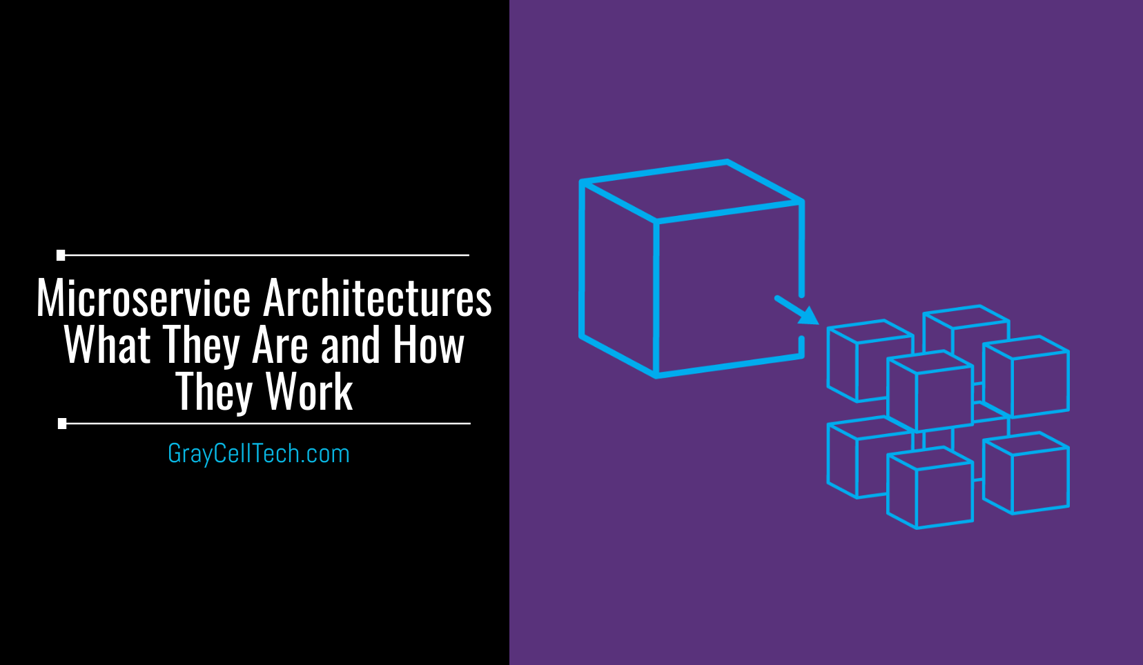 What Are Microservices Architecture and How do they work