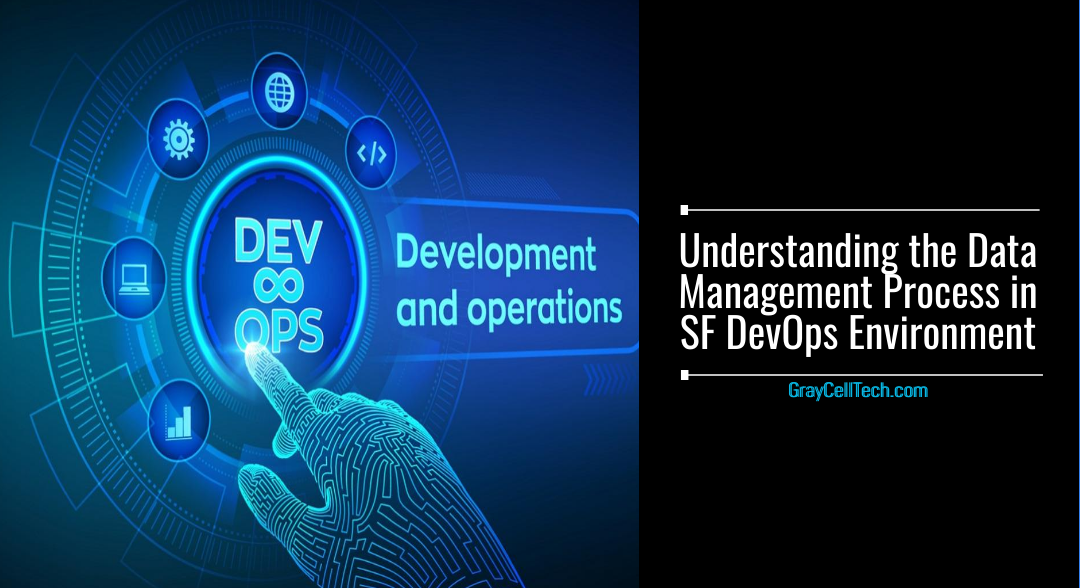Understanding the Data Management Process in SF DevOps Environment
